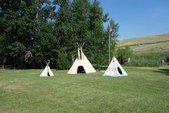 在草坪的三个印地安圆锥形帐蓬在爱达荷 库存图片
