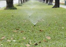 水在草坪的喷水隆头突然出现 免版税库存图片