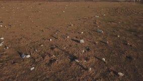 在草坪的塑料袋 股票录像