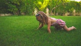 在草坪的女孩爬行 股票视频