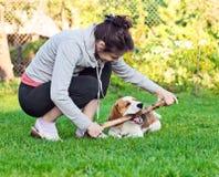 在草坪的妇女和狗 图库摄影
