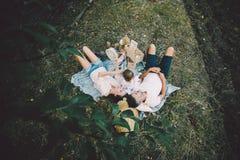 在草坪的愉快的家庭在公园 免版税库存图片