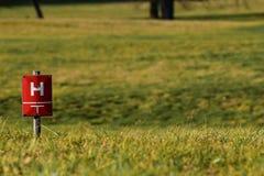 在草坪的消防栓 免版税图库摄影