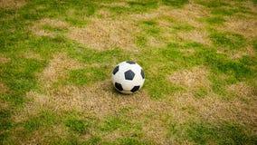 在草坪的球 免版税库存照片
