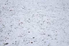 在草坪的第一雪 图库摄影