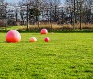 在草坪的红色球在公园 库存图片