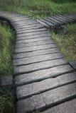 在草坪的老水泥道路方式步行方式有草的, y形状 免版税库存照片