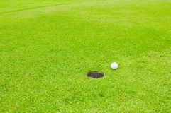 在草坪的高尔夫球 库存照片