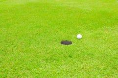 在草坪的高尔夫球 免版税图库摄影