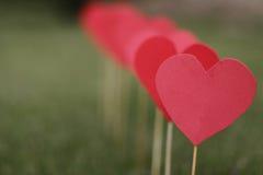 在草坪运用的心脏形状 库存图片