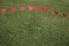 在草坪运用的心脏形状 免版税库存照片