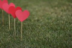 在草坪运用的心脏形状 图库摄影