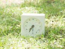在草坪围场, 7:35七三十五的白色简单的时钟 免版税库存照片