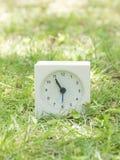 在草坪围场, 10:55十五十五的白色简单的时钟 库存照片