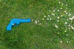 在草射击雏菊的玩具枪 免版税库存图片