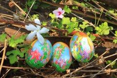 在草掩藏的被绘的复活节彩蛋,准备好复活节彩蛋狩猎传统戏剧比赛 免版税库存照片