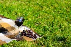 在草格子花呢披肩在笼子,两杯酒和一束的浪漫构成黑葡萄 免版税库存图片