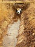 在草甸之间的被清除的排水管道在春天 免版税库存图片