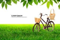 在草甸和叶子的自行车 图库摄影
