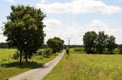 在草甸和领域之间的小街道在Lueneburg荒地LÃ ¼ neburger Heide 免版税库存图片