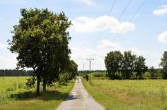 在草甸和领域之间的小街道在Lueneburg荒地LÃ ¼ neburger Heide 图库摄影