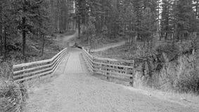 在草甸小河峡谷的木桥在鲍伯马歇尔原野复合体蒙大拿的远足的和马背包装的足迹的 免版税库存图片