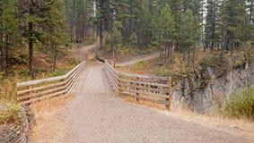 在草甸小河峡谷的木桥远足的和马背包装的足迹的在鲍伯马歇尔自然保护区在蒙大拿美国 图库摄影