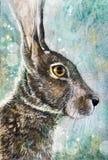 在草甸木炭艺术的杰克兔子 图库摄影
