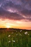 在草甸的不可思议的天空 免版税库存照片