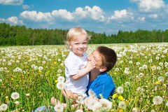 在草甸的两个儿童游戏 图库摄影