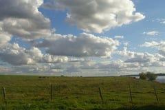 在草甸的云彩 免版税库存图片