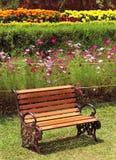 在草甸的公园长椅 免版税库存照片