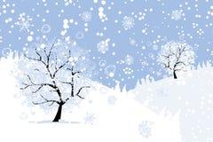 您的设计的冬天树。 圣诞节假日。 库存图片