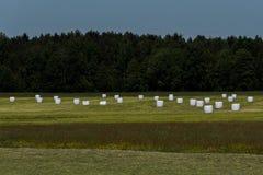 在草甸的圆的大包 库存图片