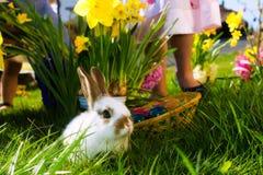 在草甸的复活节兔子有篮子和鸡蛋的 免版税库存照片