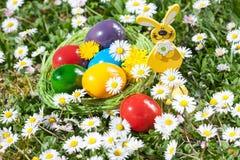 在草甸的复活节巢 库存图片