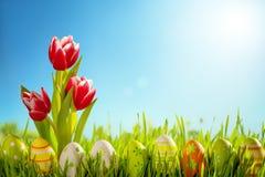 在草甸的复活节彩蛋和郁金香花 免版税库存照片