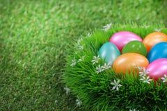在草甸的复活节彩蛋 库存照片