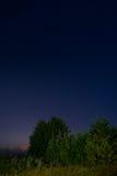 在草甸的夜 库存图片