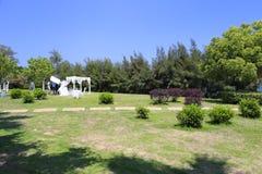 在草甸的婚礼摄影 免版税库存照片