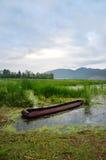 在草甸的小船用富有的水 库存图片