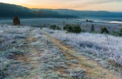 在草甸的秋季冷淡的早晨 图库摄影
