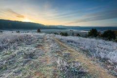 在草甸的秋季冷淡的早晨 库存图片
