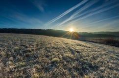 在草甸的秋季冷的早晨有树冰的 免版税库存照片