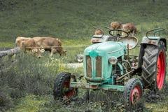 在草甸的老拖拉机 美好的山景在阿尔卑斯 免版税库存图片