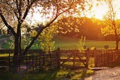 在草甸的老篱芭 库存照片