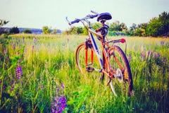 在草甸的自行车 库存图片