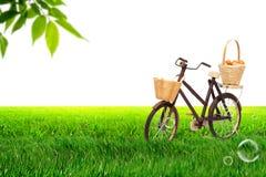 在草甸的自行车 免版税图库摄影