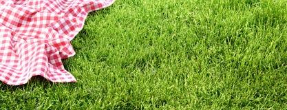 在草甸的野餐布料 免版税库存照片