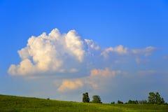在草甸的金黄云彩 免版税库存图片